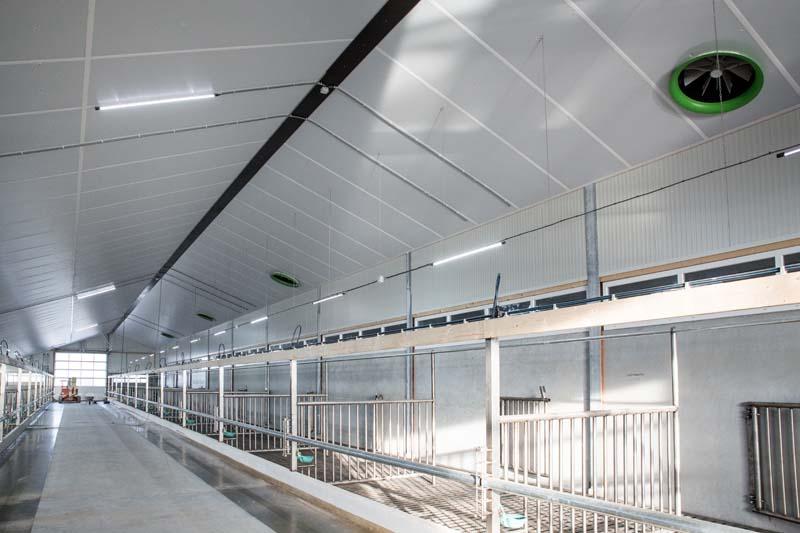 ASW PIR FR isolatie toegepast in de duurzame en welzijnsvriendelijke vleeskalverstal De Graaf in Ternaard (Friesland)
